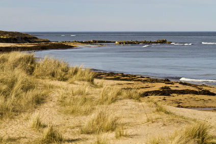 Beautiful Aberdeenshire beach